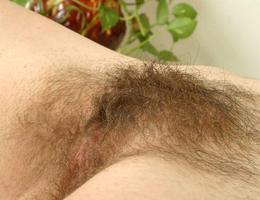 A delicate hairy pussy   gelery Image 1