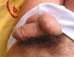 Small penis gelery Image 2