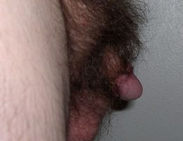 My small thick cock images Image 9