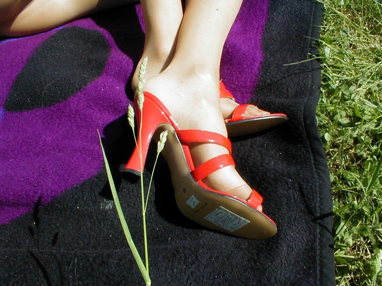 http://pbs-2.adult-empire.com/85/8570/019/pic/6.jpg