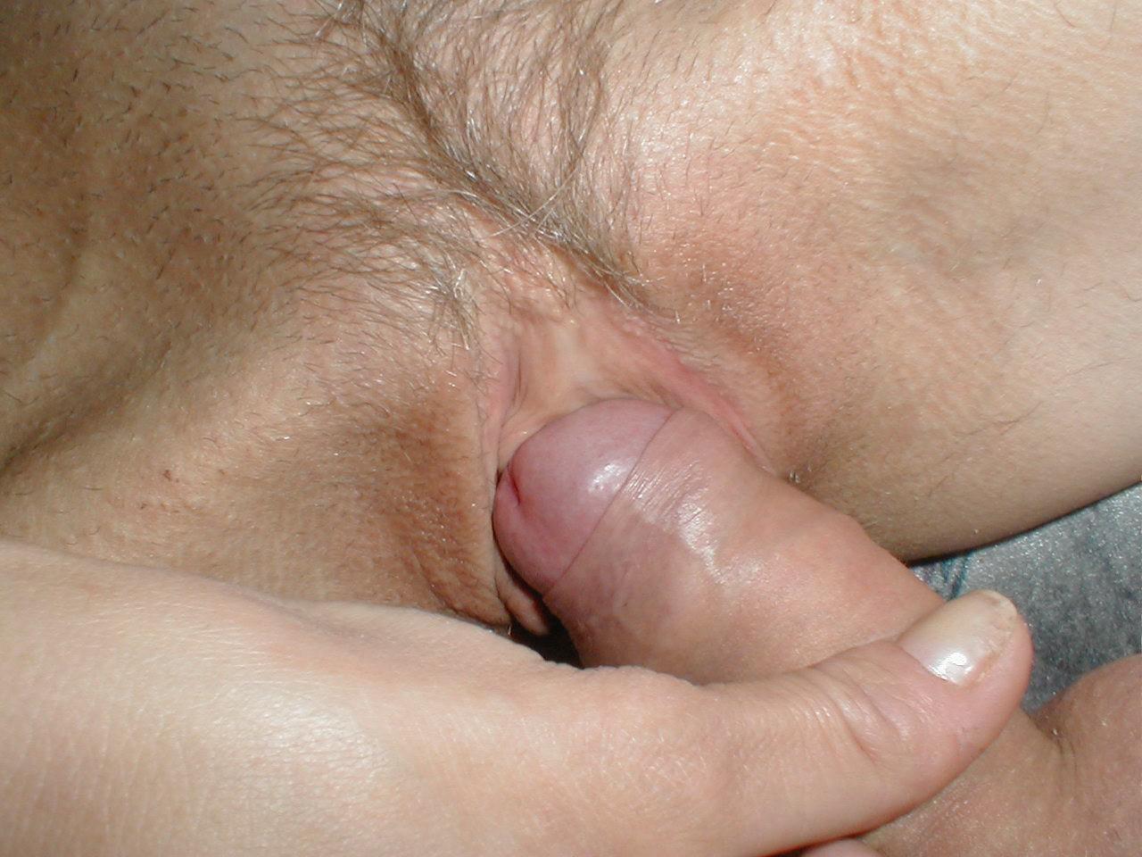 http://pbs-2.adult-empire.com/85/8570/021/pic/4.jpg