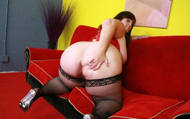 Большие жопы чулках секс фото