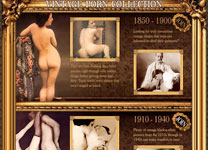 Vintage Porno Collection